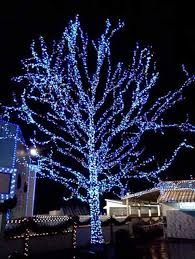 Tasteful Outdoor Christmas Decorations - most fabulous blue christmas decorating ideas christmas celebrations