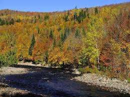 park siege social parc naturel régional de portneuf alban regional parks