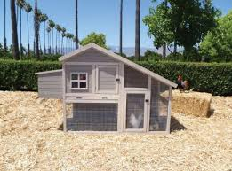 Precision Old Red Barn Chicken Coop Buy Precision Pet Products Hen House Chicken Coop In Cheap Price