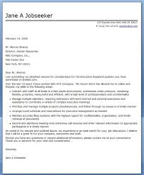 Executive Cover Letter Tips Critical Essay The A Worn Path Story Argumentative