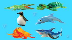 sea animals video for children ocean animals for kids preschool