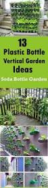 gardening ideas best 25 bottle garden ideas on pinterest plants in bottles