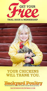 Backyard Chickens Magazine 128 Best Chicken Love Images On Pinterest Chicken Coops