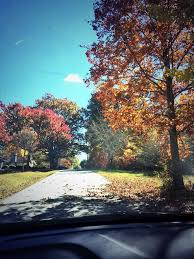Why Fall Is The Best Season 14 Reasons Why Fall Is The Best Season