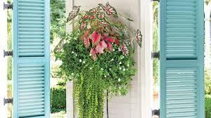 Herb Gardens by Listen To My Mama About Mason Jar Herb Gardens