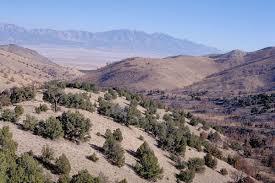 cedar mountains tooele county utah wikipedia