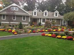 architectures front yard landscape with large green yard and
