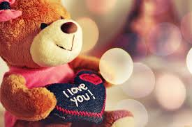 valentines day teddy bears top 100 happy s day images wallpapers 2017