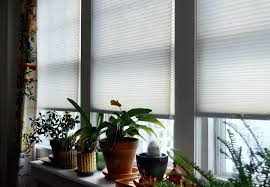 Shades Shutters Blinds Coupon Code Window Blinds Window Blinds Levolor Cordless Mini Room Darkening