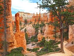 most beautiful places in the usa this is the most beautiful place in every u s state calling