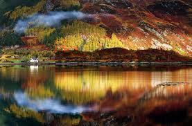 rorschach late autumn in the highlands of scotland sorin