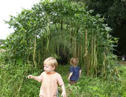 elan and fin with asparagus beans arc in the garden communes