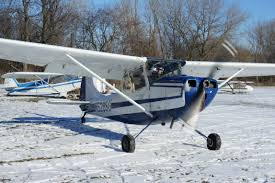 1951 l 19 bird dog for sale