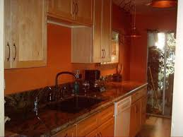 danco kitchen cabinet hinges kitchen room