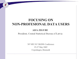central statistical bureau focusing on non profesional data users aija zigure president
