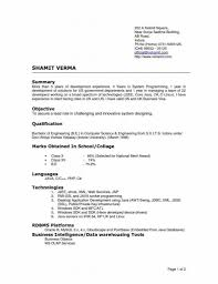 Resume Format Online by Resume Performa Of Resume