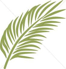 palm for palm sunday single palm in calming green palm sunday clipart
