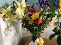 Vase With Irises In A Vase On Monday U2013 Lily Sweet Surrender U2013 Absent Gardener