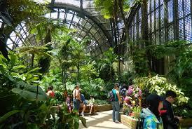 San Diego Botanical Garden Foundation San Diego Botanical Garden Foundation Flowers Gallery
