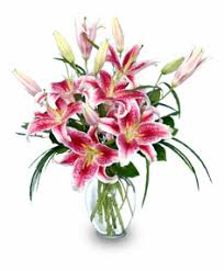 Flowers In A Vase Images Vases Designs Pictures Of Flowers In A Vase Purely Stargazers