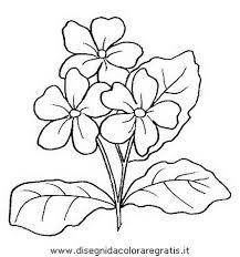 fiori disegni disegno fiori fiore 027 categoria natura da colorare