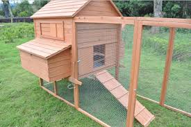 backyard chicken coops reviews home outdoor decoration