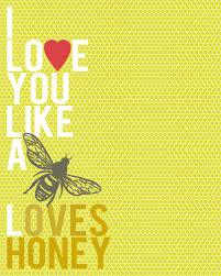 printable lyrics honey bee blake shelton love you like a bee loves honey love quotes pinterest bees