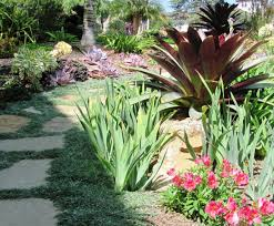 california front yard landscape design ideas striking