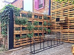 urban gardening pictures getty images