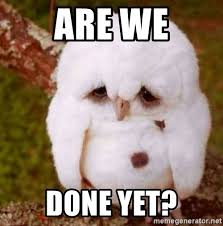 We Are Done Meme - are we done yet depressed owl meme generator