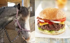 horse burger 2 2452857a jpg