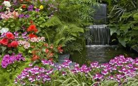 full high quality pictures flower garden 3840x2400 reuun com