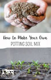 best 25 potting soil ideas on pinterest succulent soil