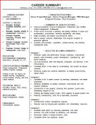 exles of a professional resume career summary pertamini co