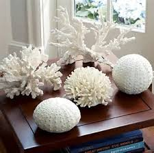 image result for coral decoration pieces home decor