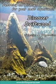 Aquascape Designs For Aquariums Best 25 Driftwood For Aquarium Ideas On Pinterest 1 Gallon Fish
