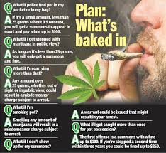 How Much Is A Case Of Bud Light Nypd To Stop Arrests For Minor Pot Possession Ny Daily News