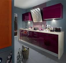 cuisiniste aviva 320 best cuisines kitchen images on kitchen ideas