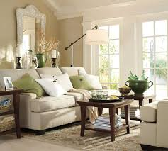 exciting indor potted plant decor comfortable living room