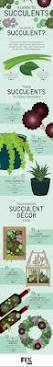1010 best gardening images on pinterest gardening plants and