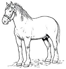 100 ideas spirit horse coloring pages for kidss for kids on