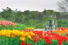 minnesota landscape arboretum named best botanical garden by usa