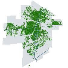 the city of winnipeg u0027s most common tree types mapped winnipeg
