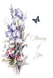 thinking of you flowers thinking of you flowers butterfly enrollments marians of