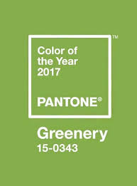 Pantone Color Of The Year 2017 Announcement | pantone color of the year 2017 announced musings of a muse
