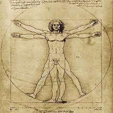 Leonardo Da Vinci Human Anatomy Drawings Leonardo Da Vinci Biography U0026 Inventor Schoolworkhelper