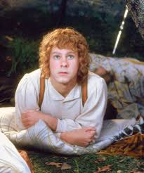 161 best merry and pippin images on merry and pippin