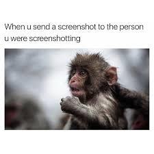 Meme Monkey - memebase monkey all your memes in our base funny memes
