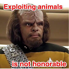 Worf Memes - michael dorn on twitter tranformationtuesday unlike my most