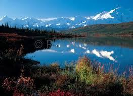 brilliant colors of denali national park alaska wallpapers 95 best north to alaska images on pinterest alaska national